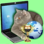 Вторая выставка кошек он-лайн
